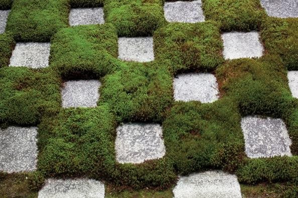 Moss, Japan, Checkerboard Garden Design Calimesa, CA