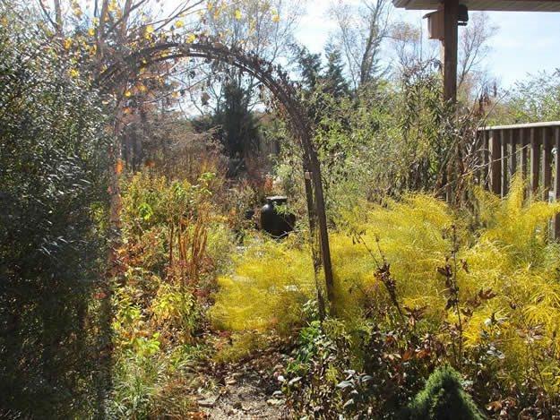 native seasonal garden garden design