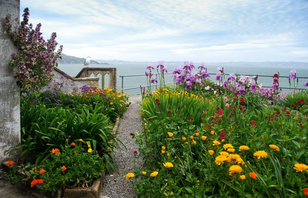 Make an Escape to the Gardens of Alcatraz Garden Design