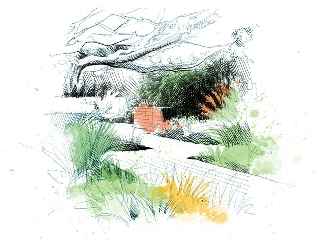 8 landscape design principles garden design for Using grasses in garden design