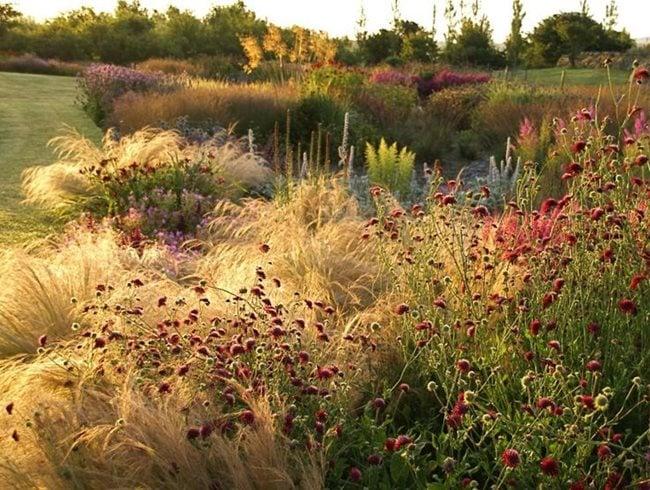 Online Perennial Course Garden Design