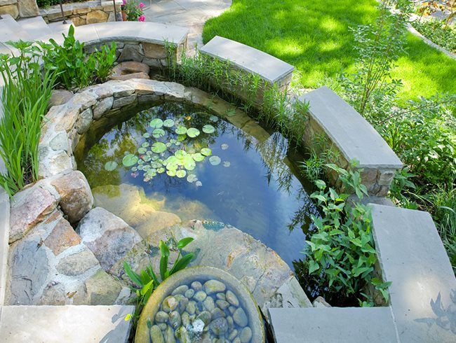 Rainwater Harvesting, Catchment Pond Tom Mannion Landscape Design Inc. Arlington, VA
