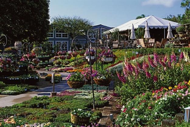 Shade Vegetable Garden Plan