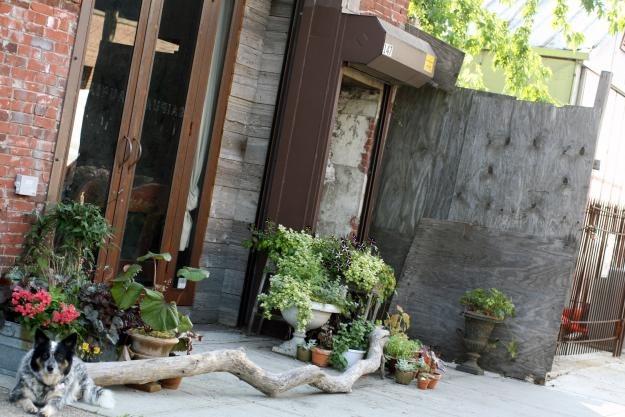Saipua Container Cutting Garden Garden Design