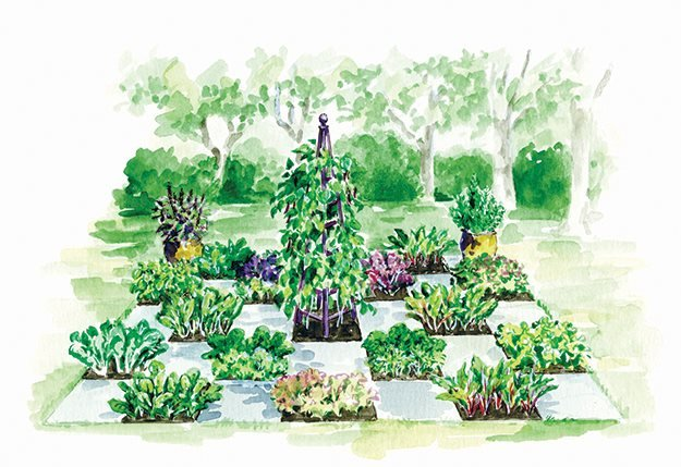 Groundbreaking food gardens breaking out of the raised for Checkerboard garden designs