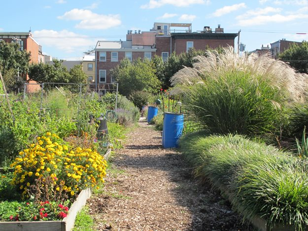 Philadelphia community gardens to visit garden design for Community garden designs