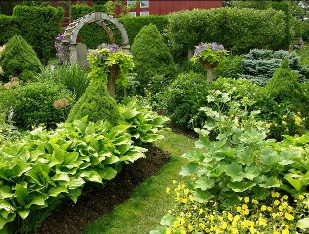 Garden gone berserk garden design for Garden designs for sun