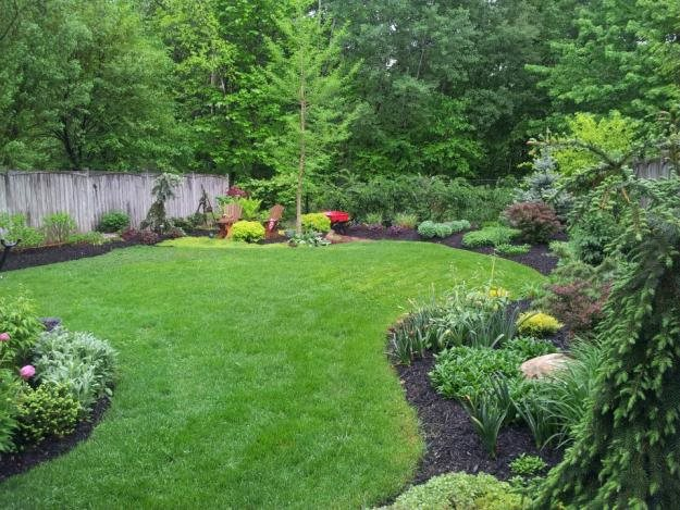 My garden lessons learned garden design for Landscaping the backyard ideas