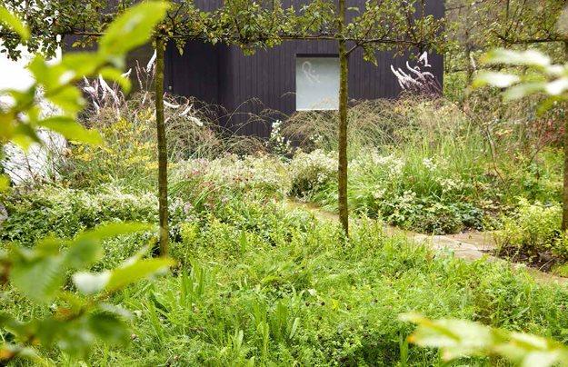 Unexpected Courtyard Garden Garden Design