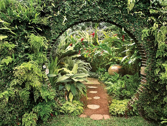 The tropical garden reinvented garden design for Hule para estanque