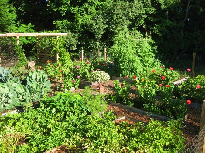 Creating a raised bed garden gallery garden design for Creating a vegetable garden