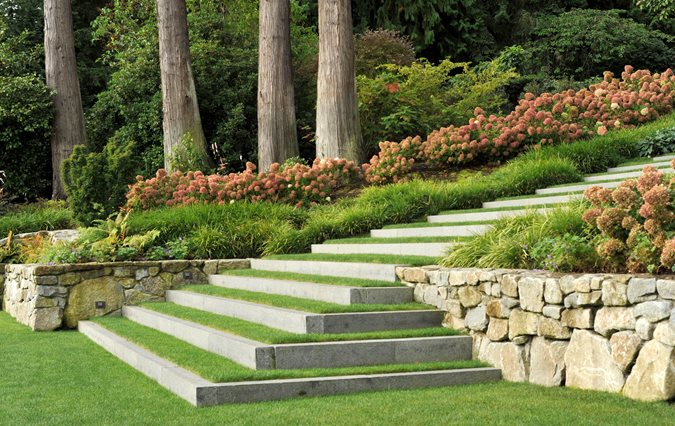 Landscape Design Suggestions from Experts