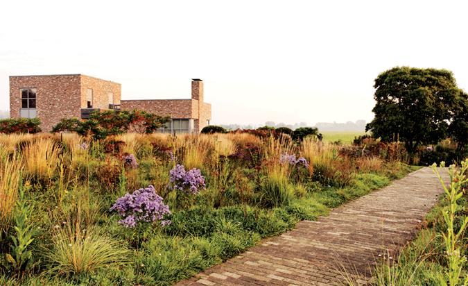 Piet Oudolf S Next Wave Photo Gallery Gallery Garden Design