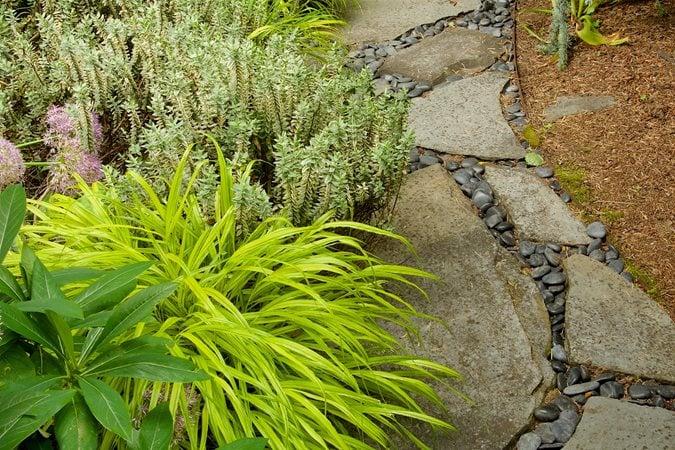 Small Garden Plants | Garden Design on backyard design zone 6, garden design zone 8, rock garden plants zone 6, garden design zone 4, rain garden plants zone 6, garden design zone 9,