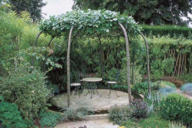 Tree Planting Ideas Amp Design Tips Garden Design