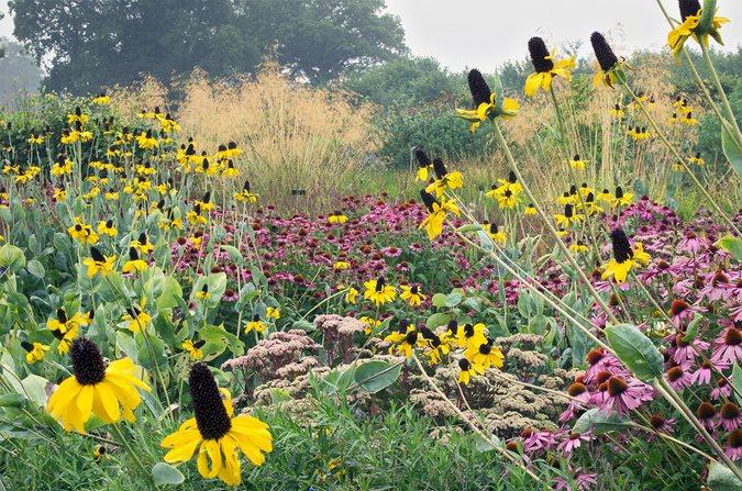 Spring Gardening Ideas Garden Design