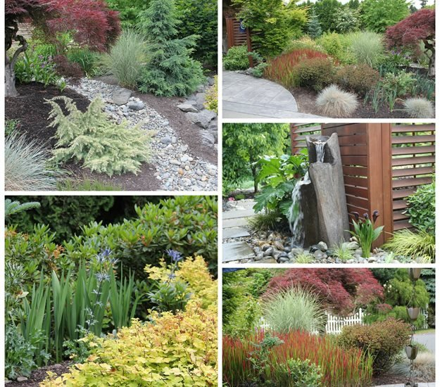 My Garden: Working with Nature to Reinvent a Front Yard | Garden ... - zen garden design
