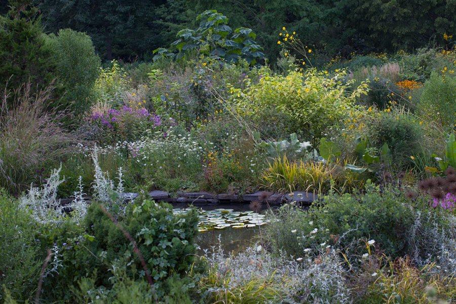 Garden design master class at chanticleer garden design for Ornamental grasses for ponds
