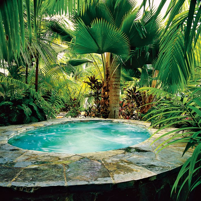 Top Uses of Palm Trees in Garden Design | Garden Design on Palm Tree Backyard Ideas id=56604