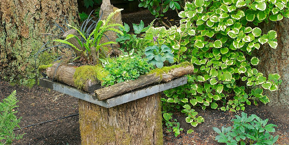 Container Gardens Made for the Shade Garden Design