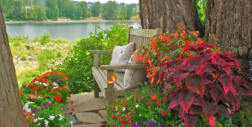 shady potted plants janet loughrey - Shade Garden Design Ideas
