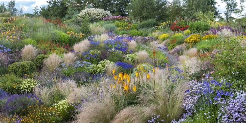 Garden That Celebrates Summer Light