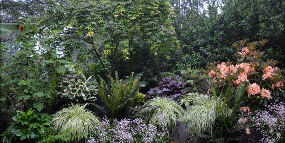 Shade Garden Design Landscapes