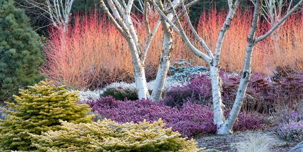 "Garden Design Magazine ""Dream Team's"" Portland Garden Garden Design Calimesa, CA"