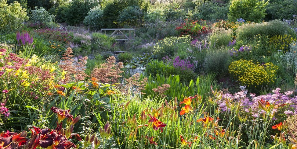 Bridge In Garden, Orange Daylilies Garden Design Calimesa, CA