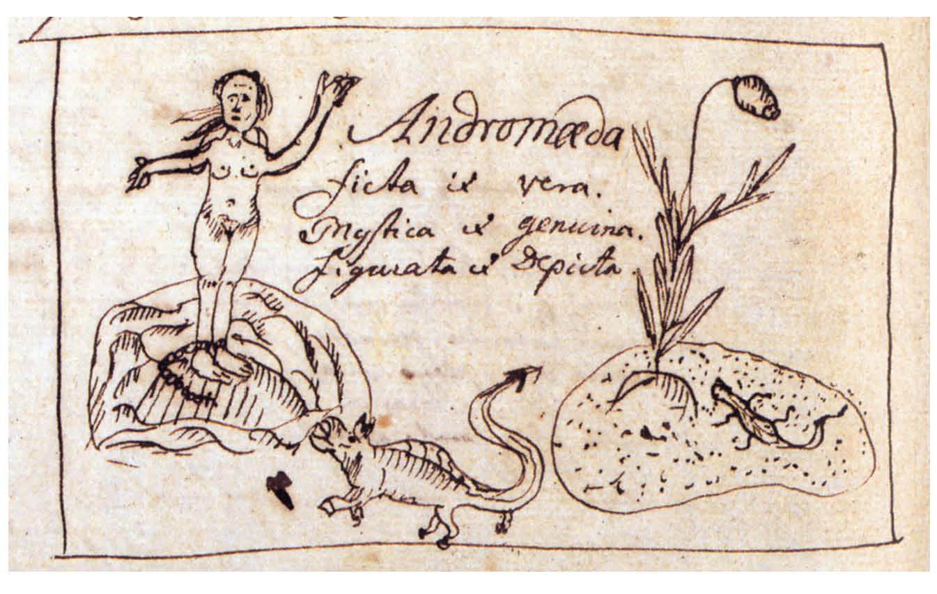 andromeda-linnaeus