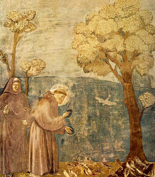 giotto - saint francis