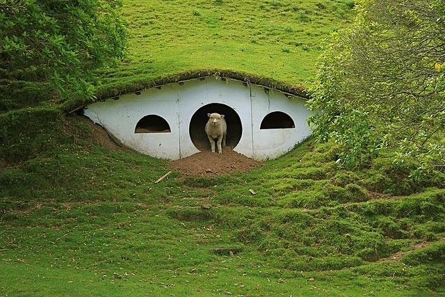 shire hobbit 4