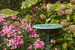 birdbath sundial