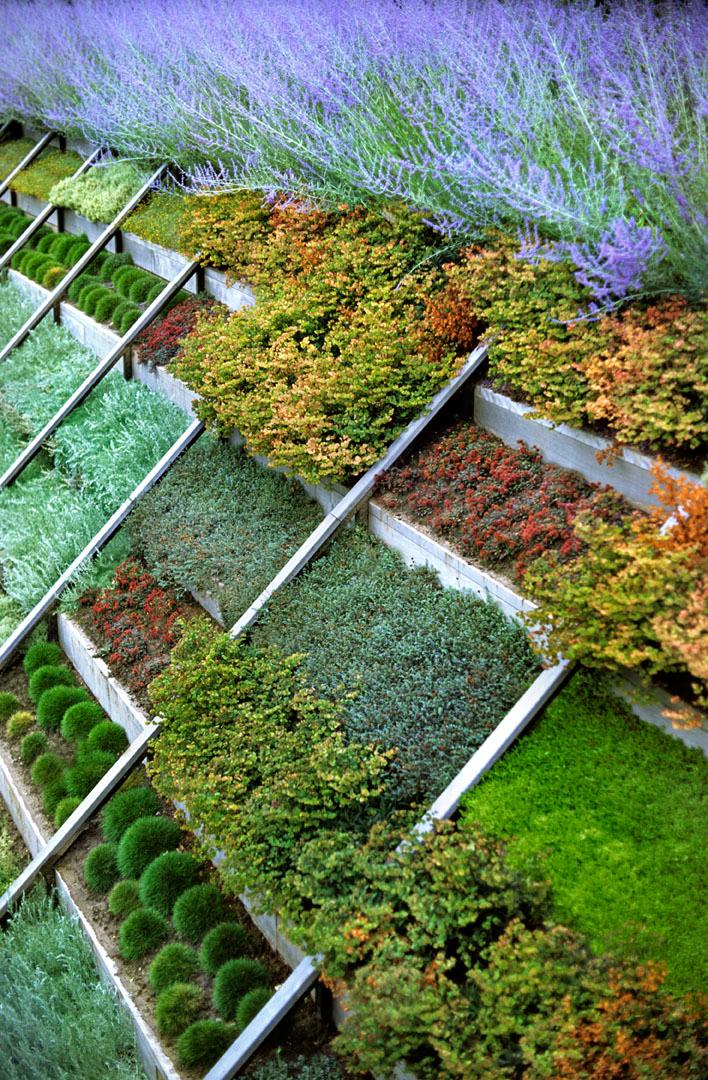 garden source 3