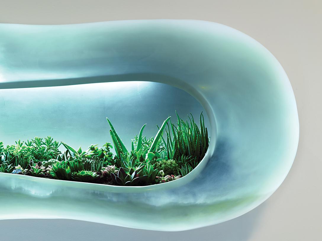 Paula Hayes terrarium