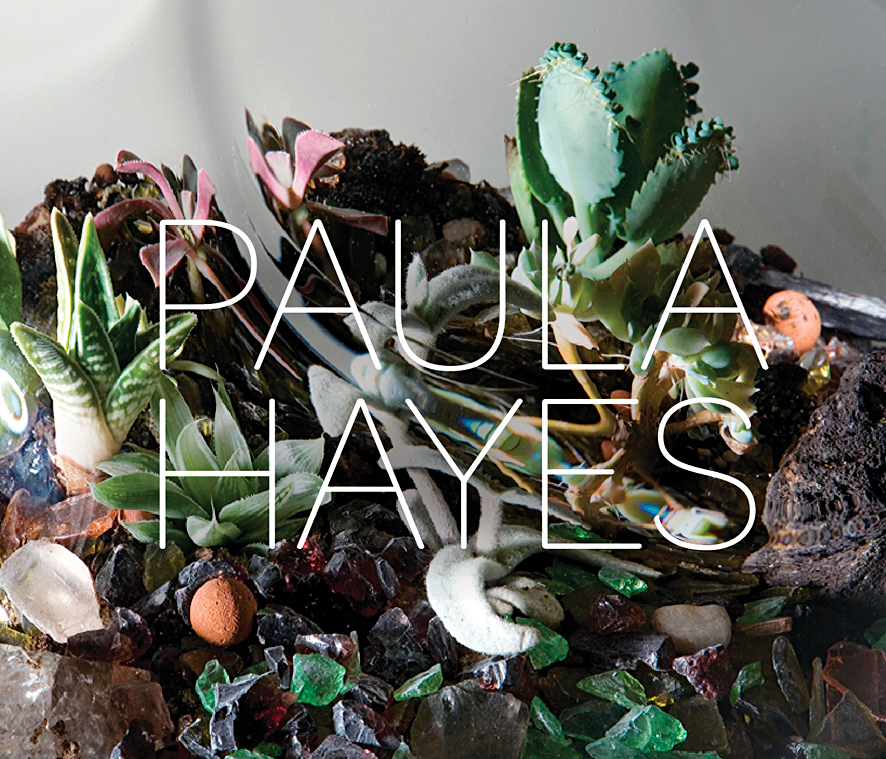 Paula Hayes book