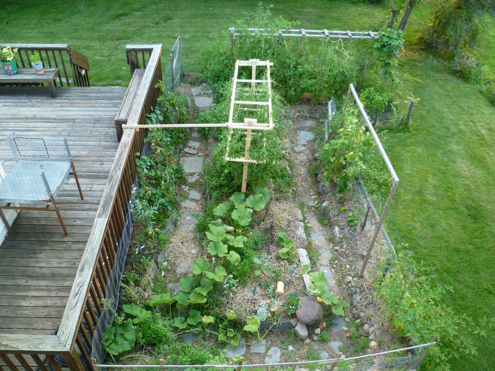 wayne surber garden
