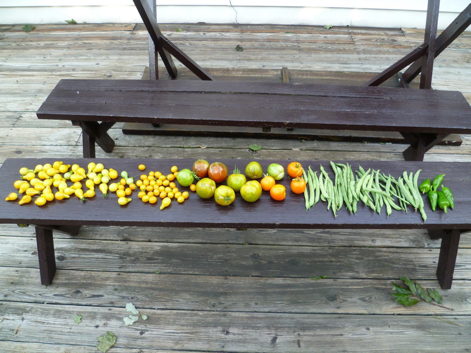 bench with vegetables