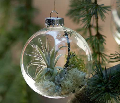 Garden Design - Flora Grubbs Ornament