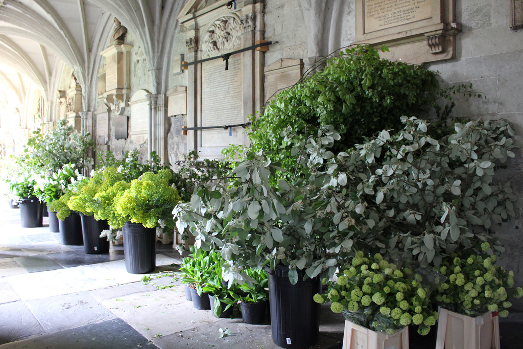 Westminister Abbey flowers