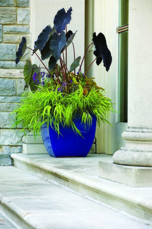 Garden Design Com