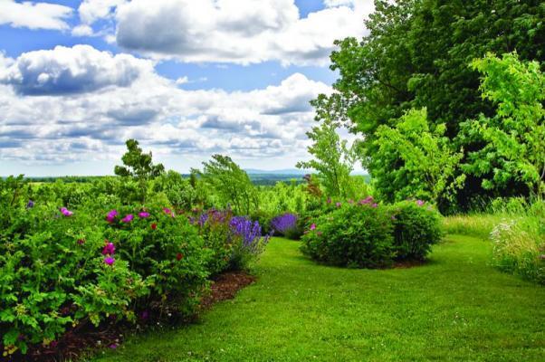 Matthew Cunningham Garden Design