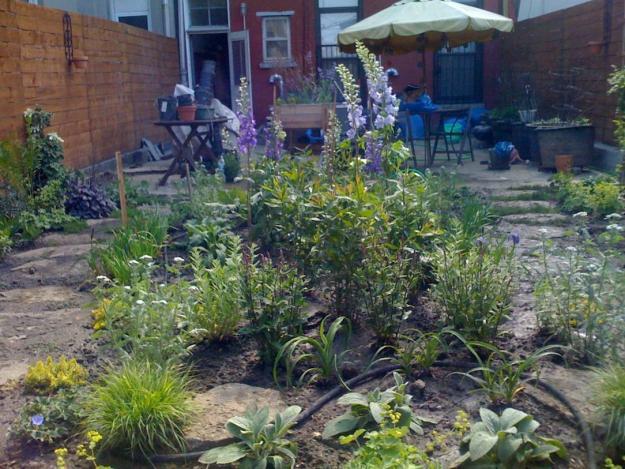 Greenpoint garden, Garden Design