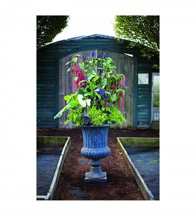 Garden Design - Ode on a Victorian Urn