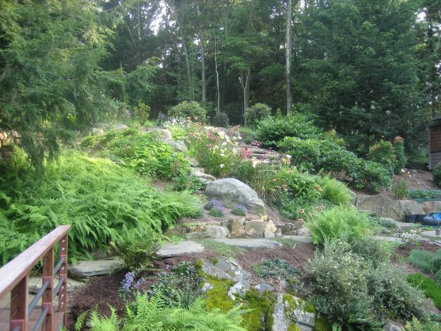 View of terraced garden