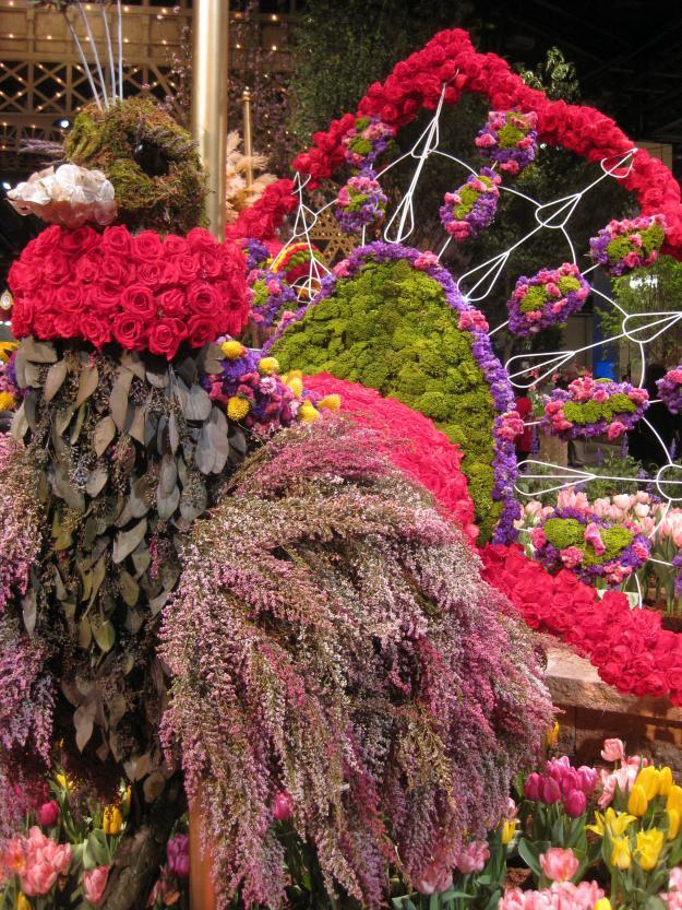 Peacock at 2011 Philadelphia Flower Show