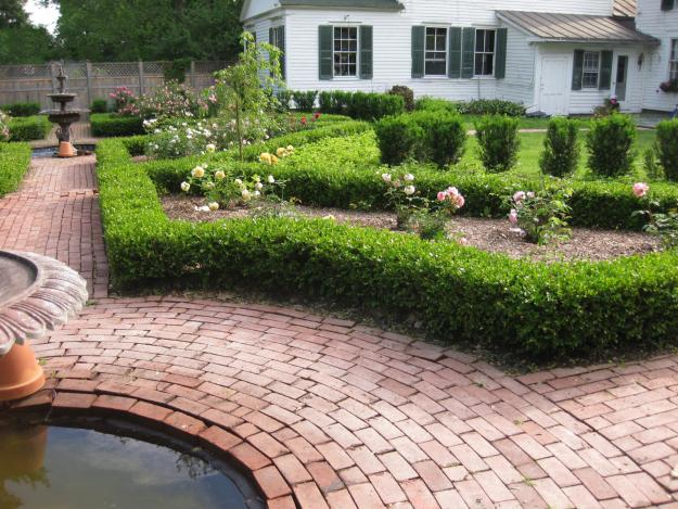 boxwood edging