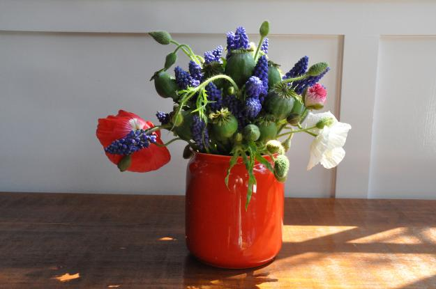 muscari and poppy arrangement 1