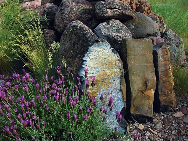 Oregon garden 1