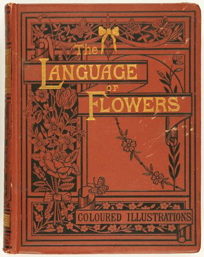 Language of Flowers, Tyas